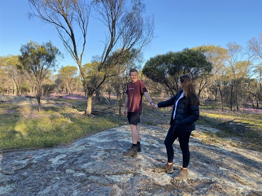 Home - Mallee Fowl Walk at Wadderin